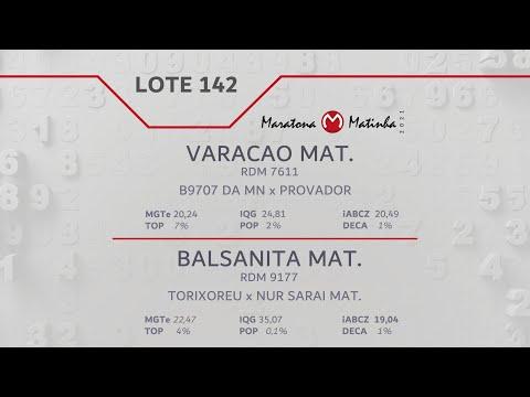 LOTE 142 Maratona Matinha