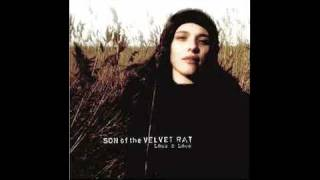 Son Of The Velvet Rat - Fall With Me