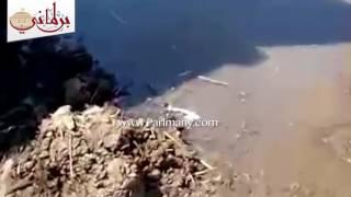 """""""واتس اب برلمانى"""": قرية ببنى سويف عائمة فى مياه الصرف الصحى ( فيديو)"""