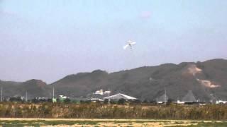 T-REX450pro 3D Flight! チクチクッ!!