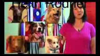 dog obedience training.how to train a dog.stop dogs from barking.potty training dogs.dog training