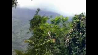 Nilgiri Mountain Railway - Adderly to Hillgrove Part-2