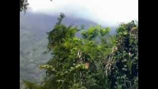 Nilgiri Mountain Railway - Adderly to Hillgrove Part-2