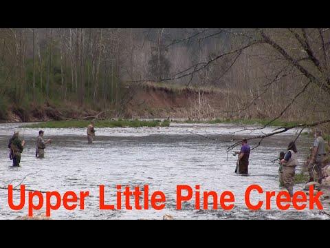 Trout Fishing Pennsylvania's Upper Little Pine Creek