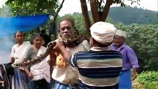 Watch: Huge python wraps itself around man's neck, tries to choke him