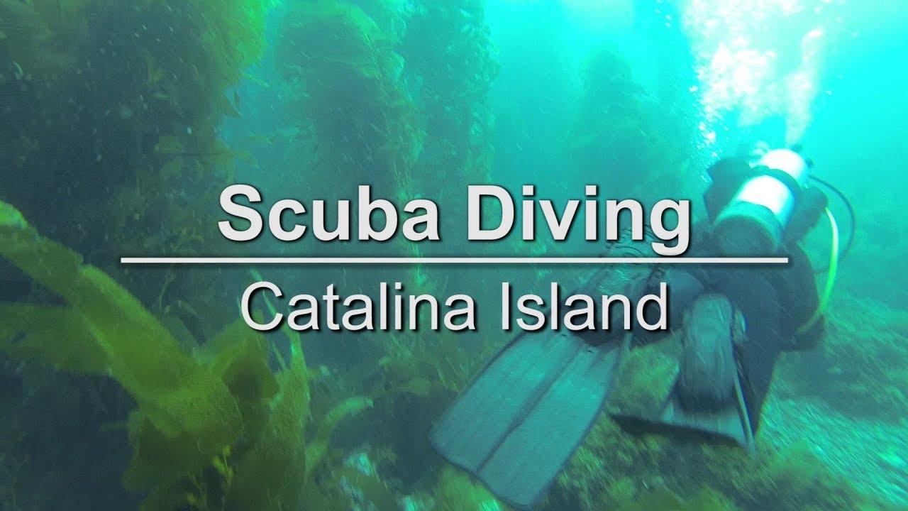 Scuba diving on catalina island california extra extra youtube scuba diving on catalina island california extra extra 1betcityfo Choice Image