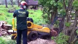 Cumbria Stump Grinding / Stump Removal - The Treecare Company - Vermeer 186. Tel 015394 34955