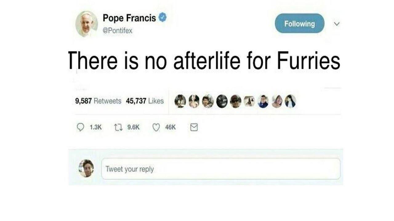 5e53d5d74 Pope Francis Tweet Memes