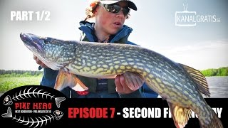 PIKE HERO 2016 - EPISODE 7 - Second Fishing Day (English, French, German and Dutch Subtitles)