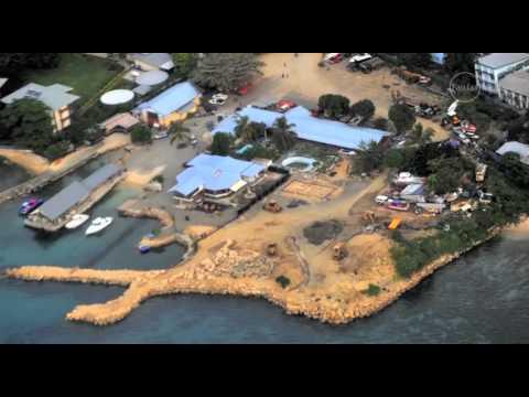 Solomon Island Dolphin trade