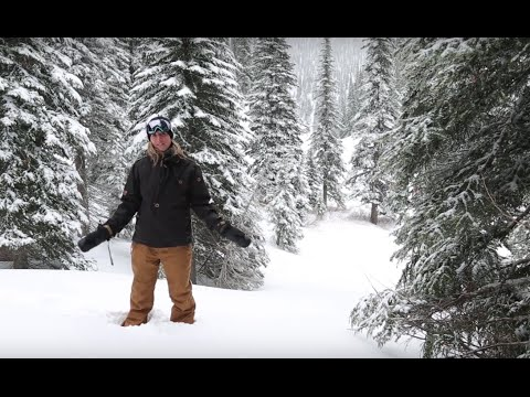 Things to do in Fernie BC - A winter guide