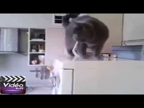 Big pussy from YouTube · Duration:  4 seconds