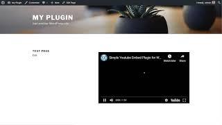 Simple YouTube Embed Plugin Setup    YouTube Video Embed in WordPress