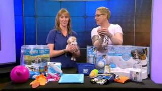 Pets on Parade - 4/16/16 - AHS