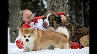 Японки ОБОЖАЮТ Путина