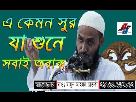 Maulana Mamun Ahmed