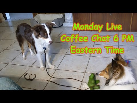 Lucky Dawg Monday Coffee Chat Live 6 PM Eastern Time  5/25/2020