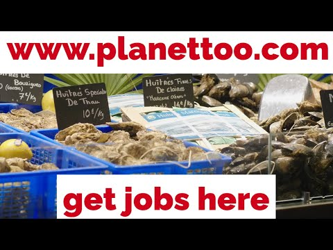 How/Where To Get Carpenter, Architect, Plumber, Electrician, Lighting, Pipe, Piling, Jobs Candidates