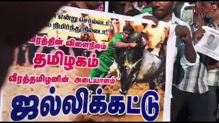 Jallikattu protests in Coimbatore