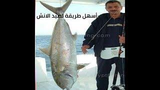 طريقة صيد الانش بالحية مؤمن سمكة