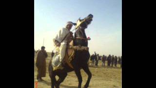 Cheikh Mamou Dolma Algérienne.