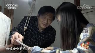 《远方的家》 20191127 长江行(79) 一江秋水向东流  CCTV中文国际