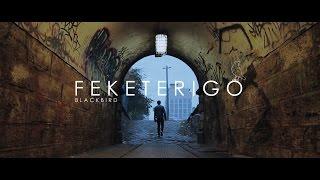 F E K E T E R I G Ó | BLACKBIRD [Teaser Trailer 2014]