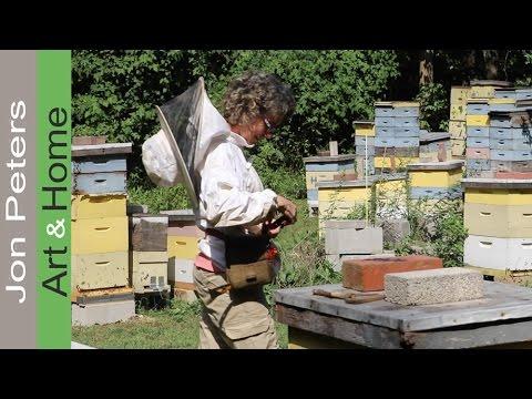 Small Business Spotlight! My Friend's Bee Yard – Apiary