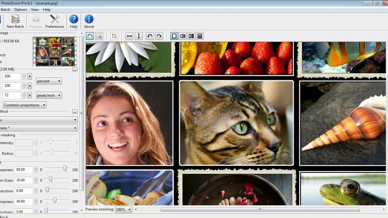 benvista photozoom pro v 4.0.6