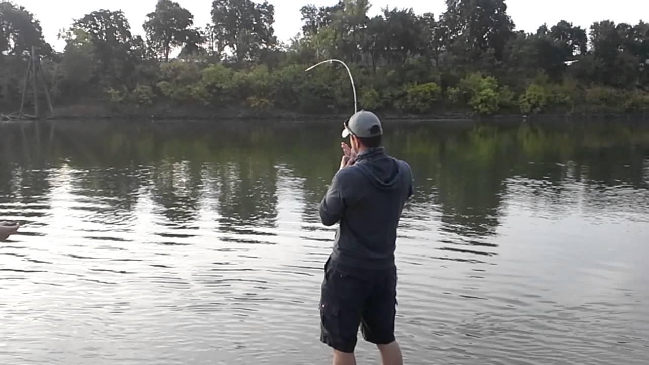 Bank Fishing For Sacramento River King Salmon Youtube