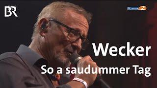 Konstantin Wecker – So a saudummer Tag