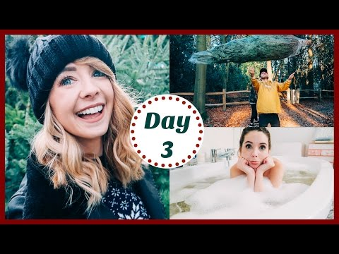 CHRISTMAS TREE SHOPPING | VLOGMAS