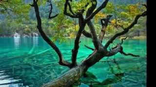 видео Азорские острова достопримечательности фото и описание