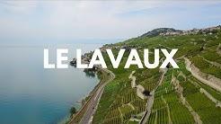 [4K] Drone Footage/ Le Lavaux Vaudois au bord du Lac Léman
