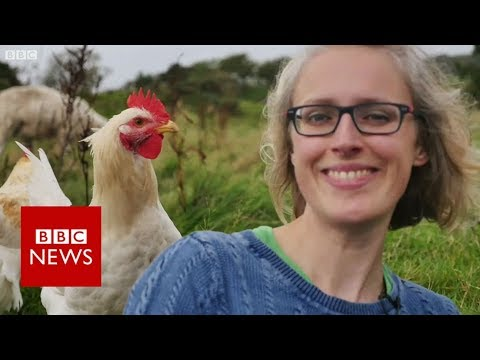 'I Faced Death, Now I Care For 90 Animals' - BBC News