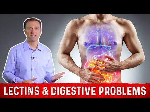 High & Low Lectin Foods & Digestive Problems Explained by Dr.Berg