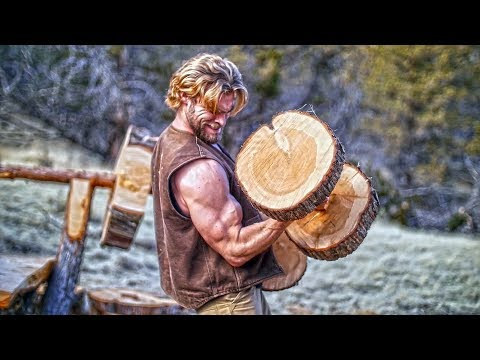 We Built an ENTIRE GYM from TREES!
