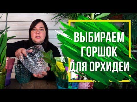 Как выбрать кашпо для орхидеи 🌷 Горшки для орхидей 🌼