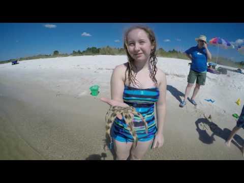 Panama City Beach vacation 4k