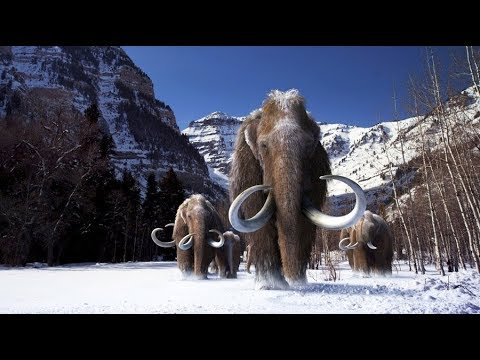 The Mammoth movie # 10000 BC