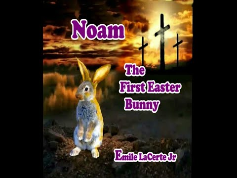 Easter Bunny Book by Noam