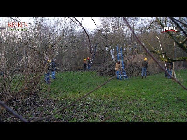 Keuken van Utrecht: Landgoed Bredius