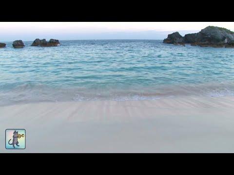 ✧ Calming Seas・White Sand・Tropical Beach・Soothing Ocean Waves & Best Relax Music・3 HOURS・1080p HD ✧