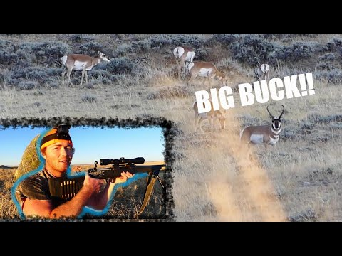 2019 Wyoming Antelope Hunt -Public Land *HELPFUL TIPS TO NOT WASTE TIME!!*