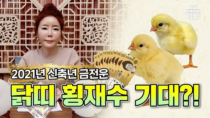(용한점집)(띠별운세) 서울점집 삼청궁_2021년 신축년 닭띠 운세!! [점점tv정주행하기]