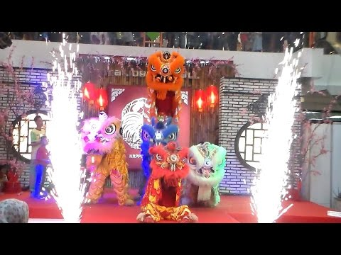 Lion Dance and Firework Attraction in Lunar New Year 2017