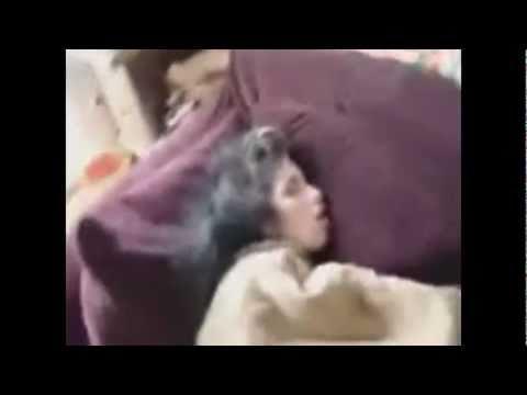 Amy Winehouse's Body With Drug Paraphernalia