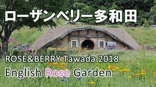 BLOG :http://f-imazine.com/rosaberrytawada-rose-garden/ FACEBOOK:ht...
