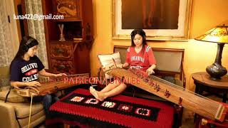 Lenny Kravitz- Are You Gonna Go My Way Gayageum ver. by Luna