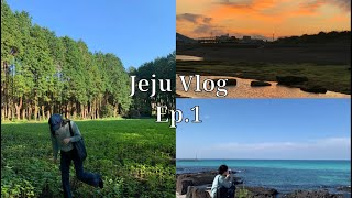 [Vlog] : 제주도 2박 3일 뚜벅이여행 Ep.1 …